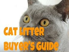 tests and analyzes every major cat litter brand and various cat litter accessories to determine what the best product is that meets your - Cat Litter Reviews