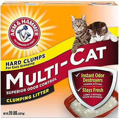 Arm-Hammer-multi-cat-extra-strength-1.jpg