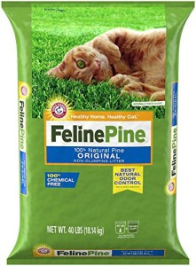 feline pine non-clumping cat litter review