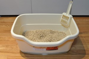What is the Best Clumping Cat Litter?