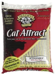 precious cat cat attract cat litter review