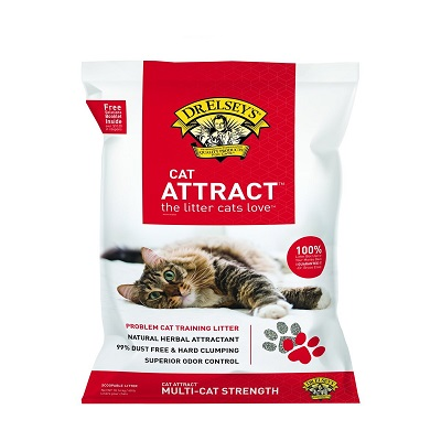 precious cat cat attract cat litter full