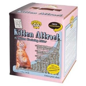 precious cat kitten attract cat litter review