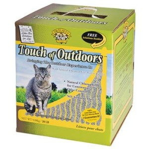 precious cat touch of outdoors
