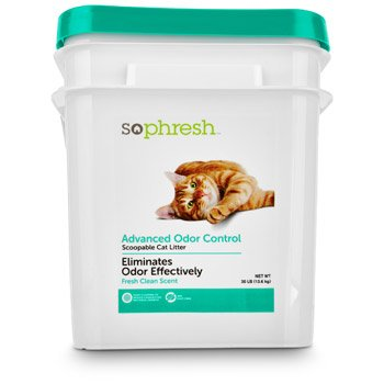 So Phresh Advanced Odor Control Scented Cat Litter Review
