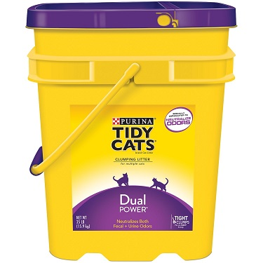 Tidy Cats Dual Power Cat Litter Review