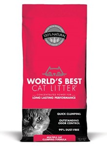 world's best cat litter multiple cat clumping cat litter review
