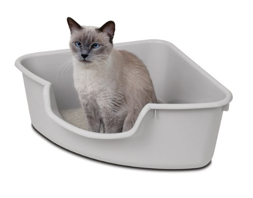 cat litter corner box entry