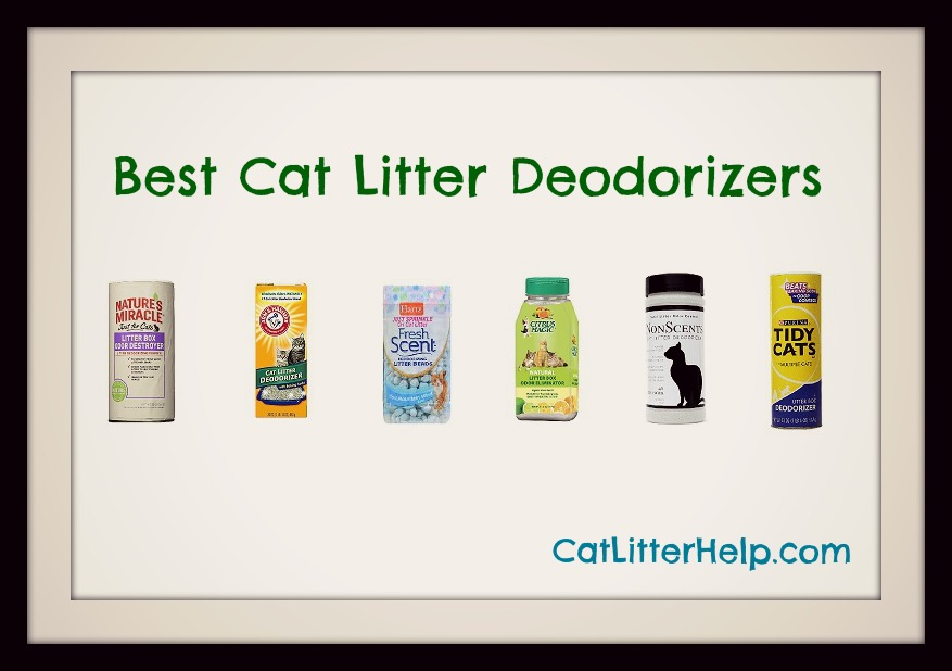 best-cat-litter-deodorizers-main