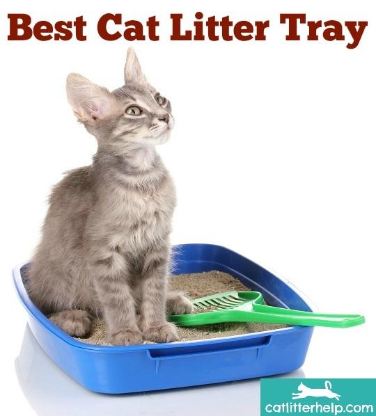 best cat litter tray header