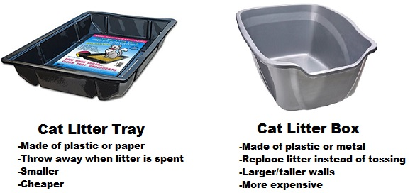 Best Cat Litter Tray The Ultimate Guide
