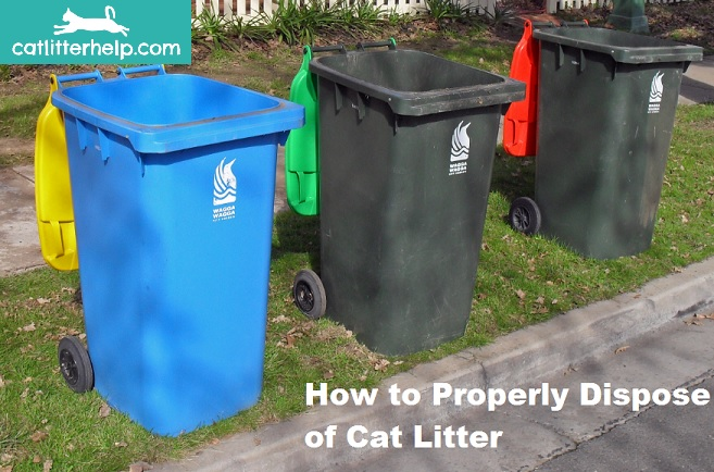 How Do I Dispose Of Cat Litter With Clay