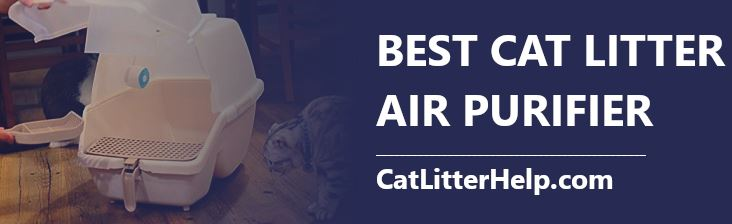 best cat litter air purifiers